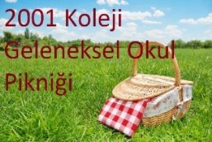 picnic-feat (1)